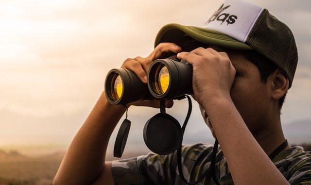 jagtkikkert